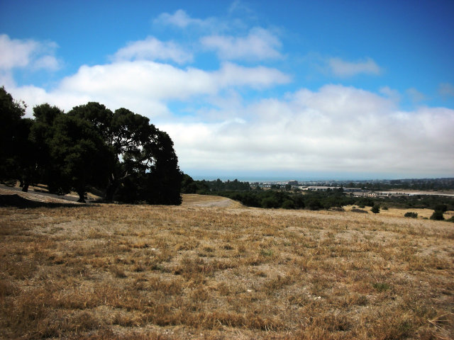 Featured Property in MONTEREY, CA, 93940