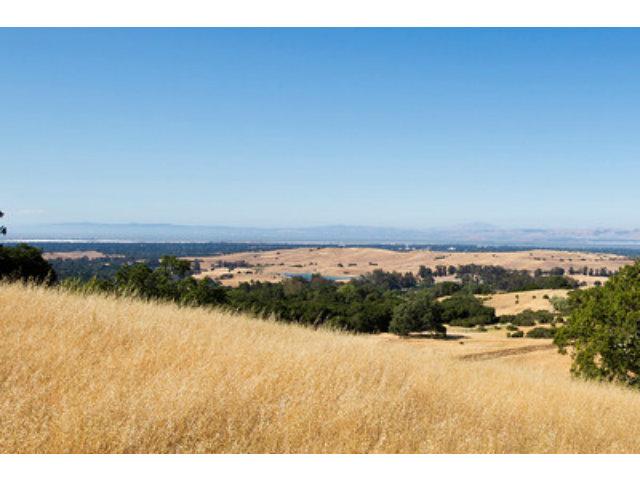 Real Estate for Sale, ListingId: 28505225, Palo Alto,CA94304