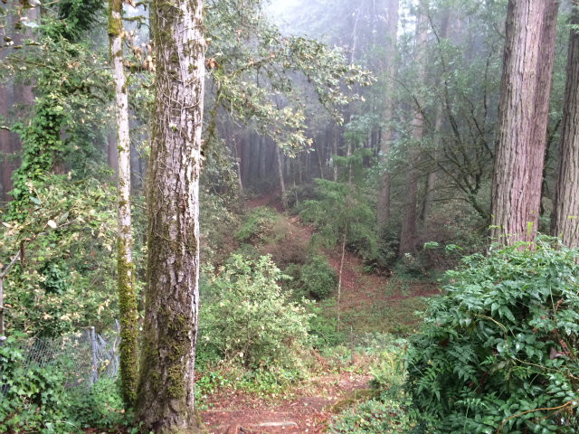 Real Estate for Sale, ListingId: 26732631, Redwood City,CA94062