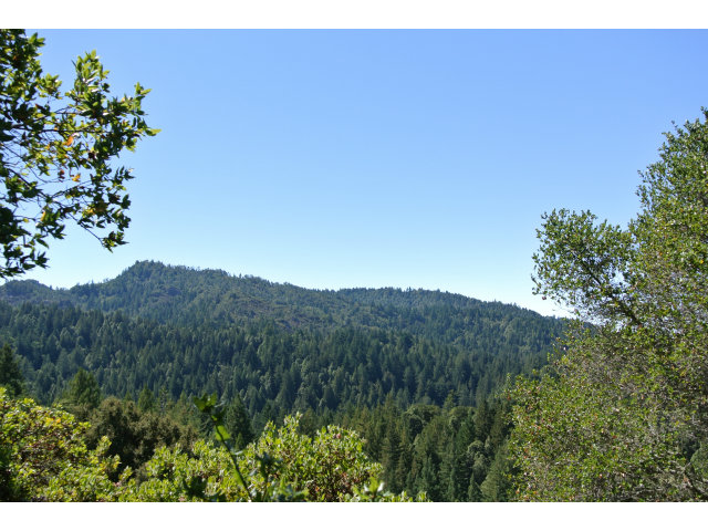 Single Family Home for Sale, ListingId:28505336, location: 21200 BIG BASIN WY Boulder Creek 95006