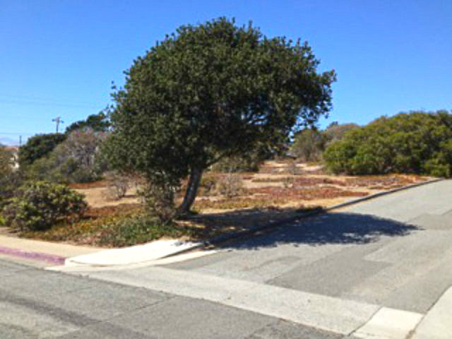 Land for Sale, ListingId:23514093, location: 0 KIMBALL AV Seaside 93955