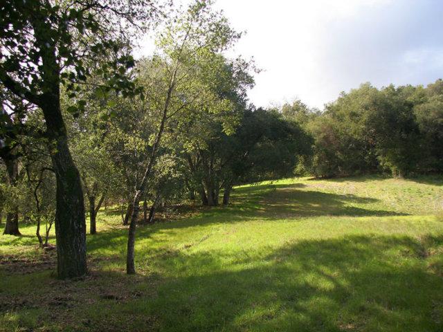 Land for Sale, ListingId:26881690, location: 34160 ROBINSON CANYON RD Carmel 93923