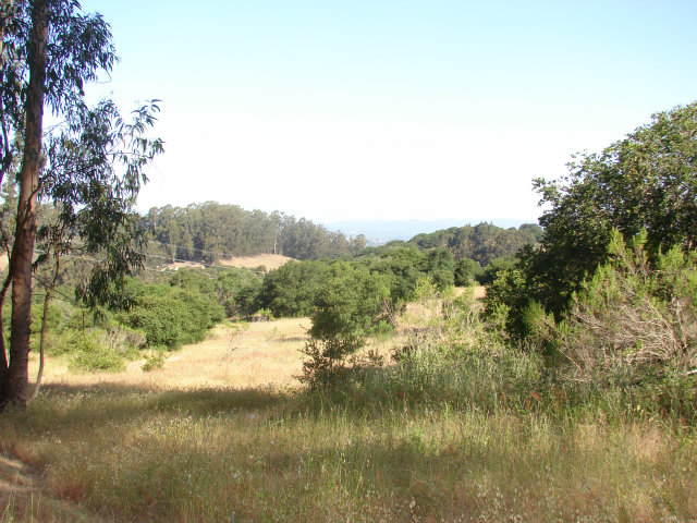 Land for Sale, ListingId:26732627, location: 0 Vega Road Royal Oaks 95076