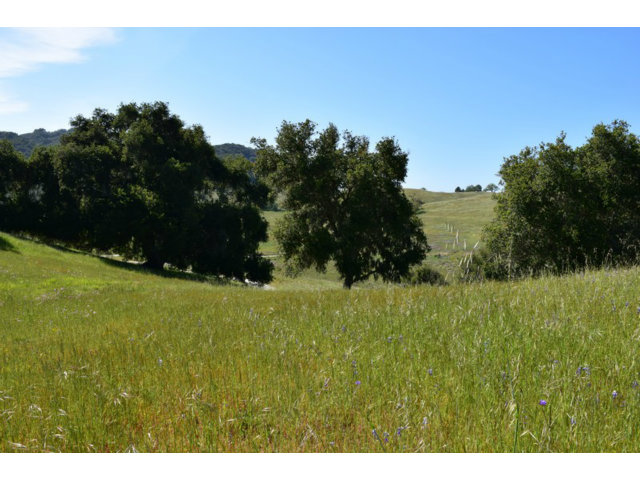 Real Estate for Sale, ListingId: 27998992, Carmel, CA  93923