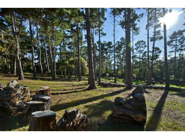 Real Estate for Sale, ListingId: 27627112, Pebble Beach,CA93953