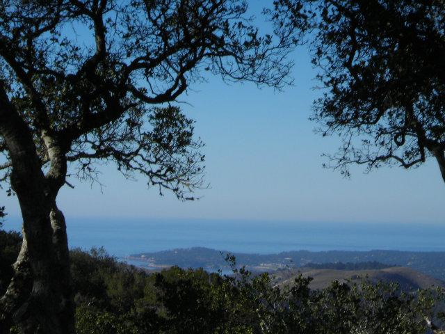 Real Estate for Sale, ListingId: 29039525, Carmel,CA93923