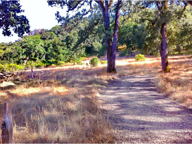 Land for Sale, ListingId:29361569, location: 8 SAN CLEMENTE TL Carmel 93923
