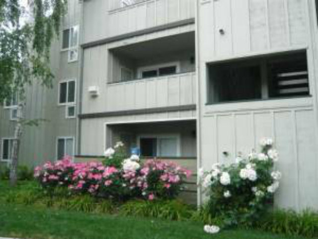 Rental Homes for Rent, ListingId:29712992, location: 102 Monte Verano Ct San Jose 95116