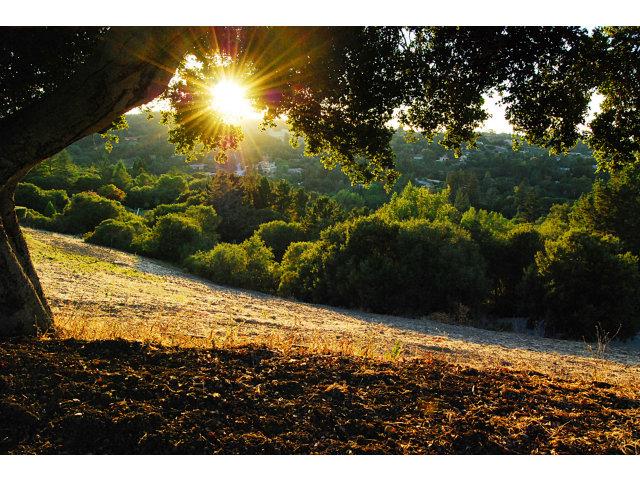 Real Estate for Sale, ListingId: 27685373, Los Altos Hills,CA94022