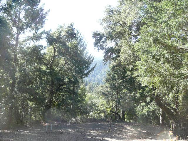 Viewing Image 2