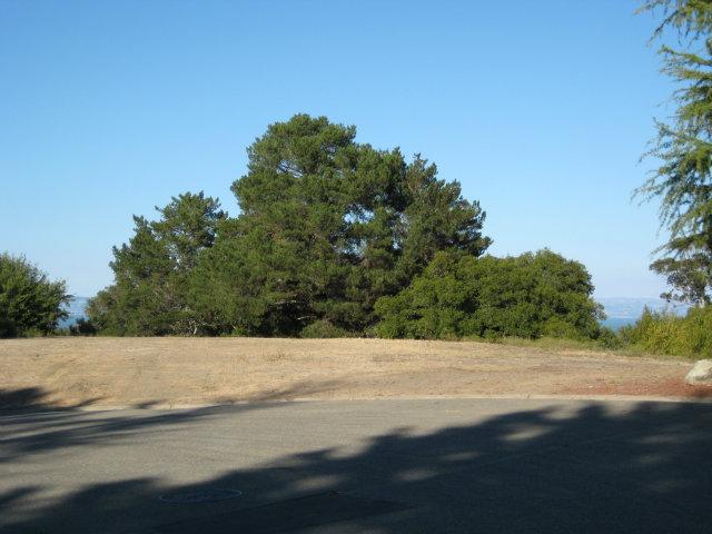Real Estate for Sale, ListingId: 25182562, Hillsborough,CA94010