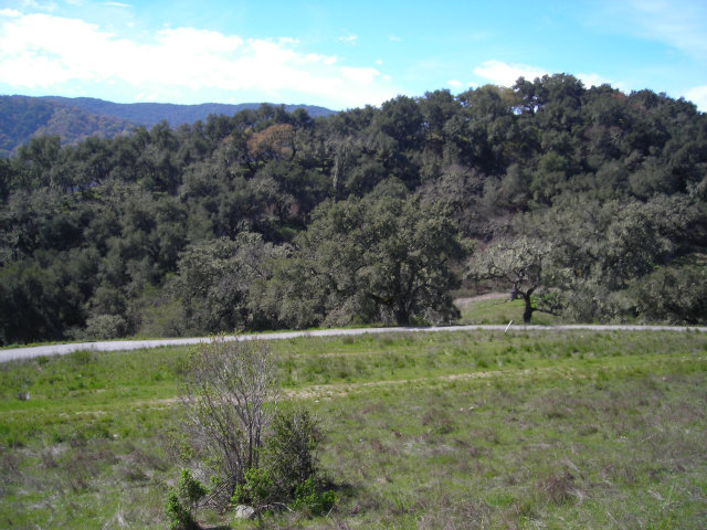 Land for Sale, ListingId:29039533, location: 6 RANCHO SAN CARLOS RD Carmel 93923