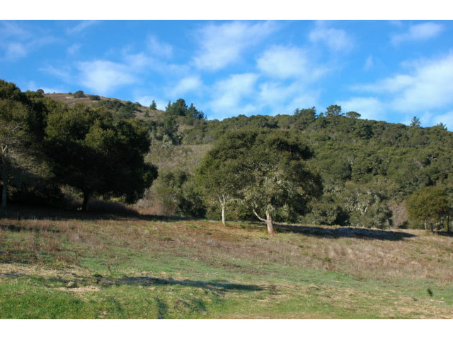 Real Estate for Sale, ListingId: 25167113, Carmel, CA  93923