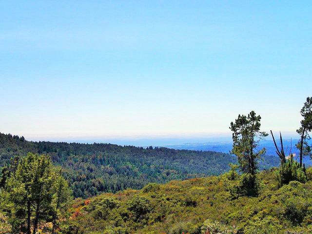 Real Estate for Sale, ListingId: 29293442, Los Gatos,CA95033