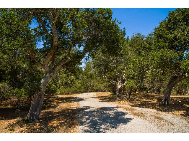 Real Estate for Sale, ListingId: 29489748, Carmel,CA93923