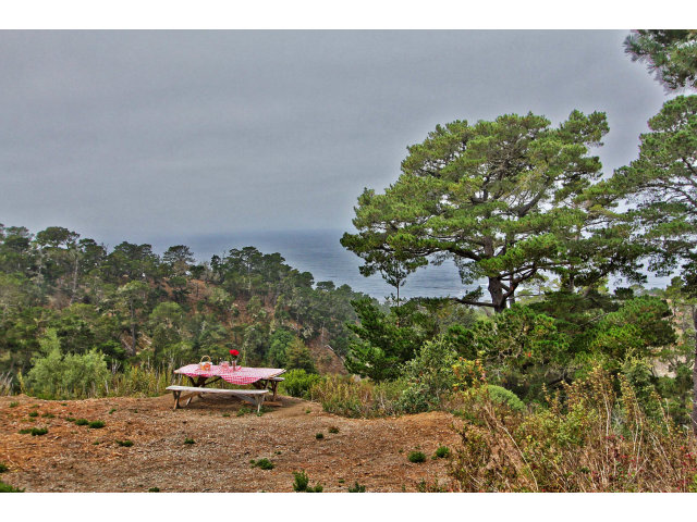 Land for Sale, ListingId:29458442, location: 30780 SAN REMO RD Carmel 93923