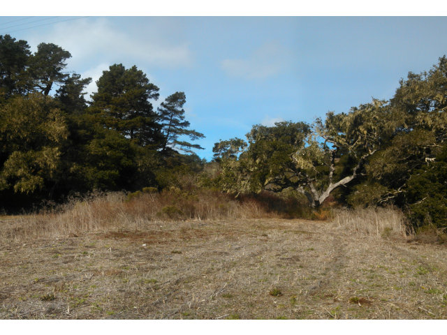 Land for Sale, ListingId:27524971, location: 0 Canada CT Carmel 93923